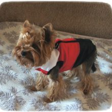 Puppy Coat Jacket / Vest in 6 Colors