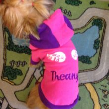 Fashionable, cute Yorkie Hooded Sweatshirt
