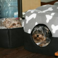 Multi-functional Puppy House / Bed