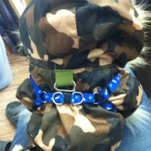 Adjustable Mesh Harness for Dogs