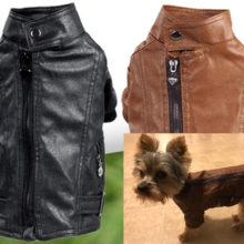 Beautiful, trendy puppy leather jacket (black & brown colors available)
