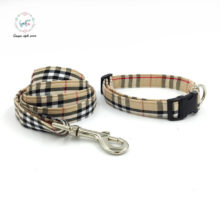 Beautiful adjustable puppy collar and leash with bow tie