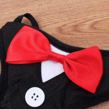 Super pretty bowtie tuxedo-style yorkie harness with leash