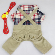 Very cute shirt and pants yorkie outfit