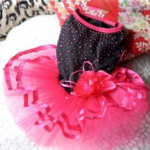 Extremely adorable puppy princess dress for parties & events