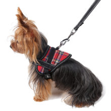 Comfortable Oxford Cloth Yorkie Harness-Vest / 4 colors