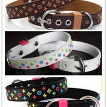 Fashionable 3-Color Yorkie Collar
