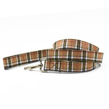 Fashionable Red & Brown Yorkie Collar