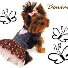 Super cute Yorkie Jean overalls outfit